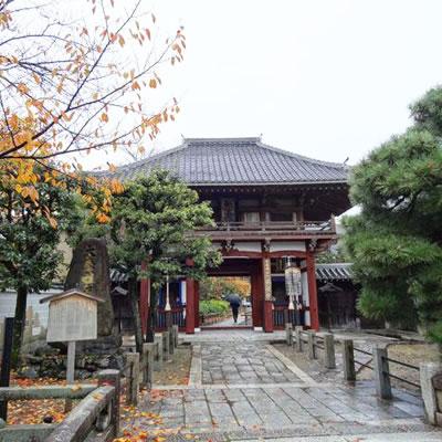 尊陽院の門